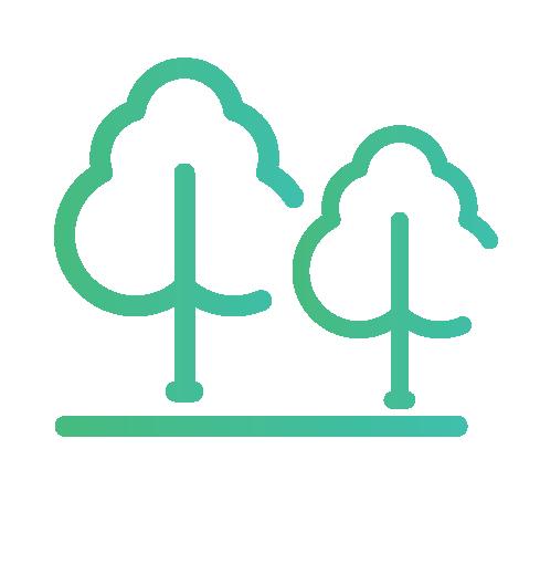 Arborização do Sistema Viário